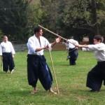 Birankai Aikido sesshin 2013 wea