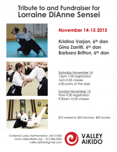 Valley Aikido Seminar