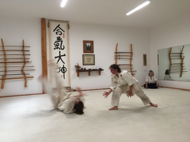 Before Summer Camp during my Sankyu test.