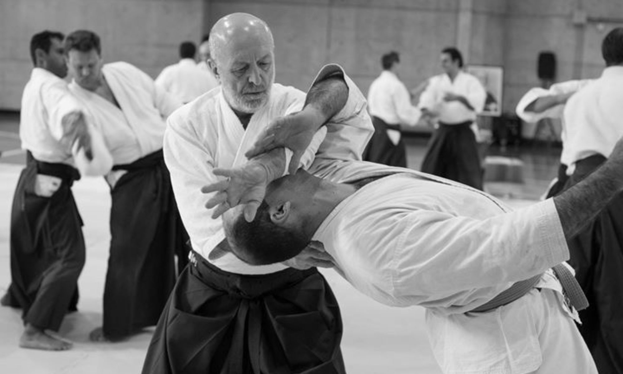 Birankai Aikido News